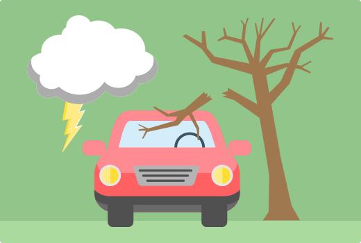 Afbeelding uit het bericht Dekt jouw autoverzekering stormschade?