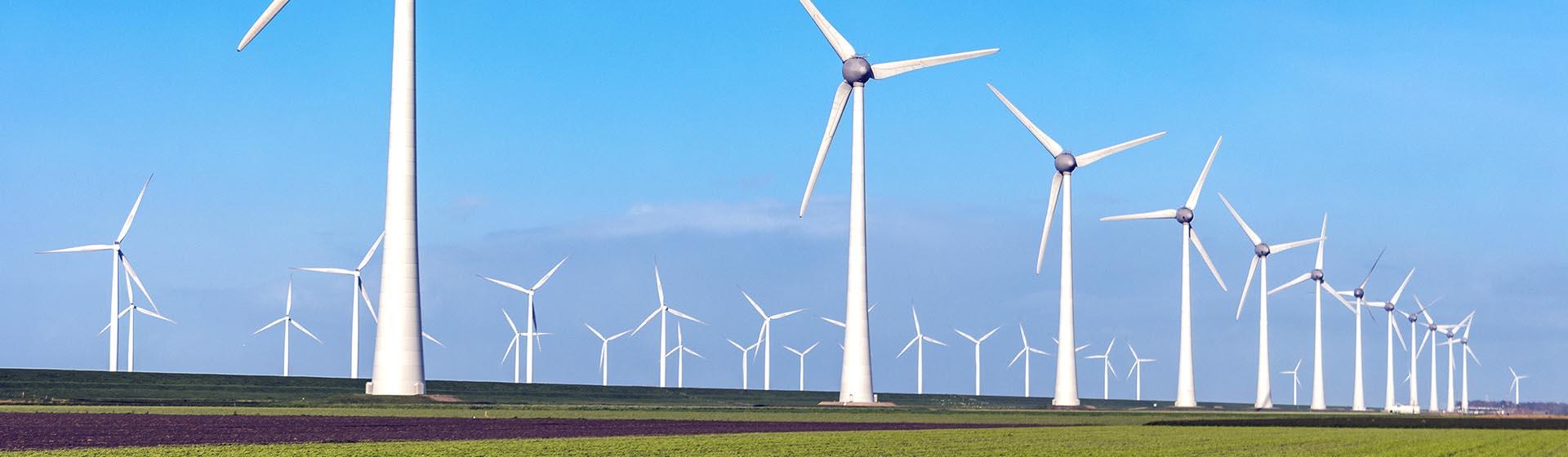 Volgend jaar minder betalen voor je energie? Check de tool van Independer